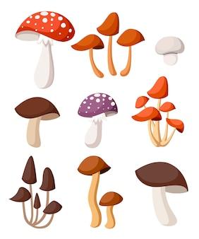 Иллюстрация декоративные грибы. . иллюстрация на белом фоне. страница веб-сайта и мобильное приложение.