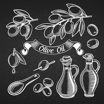 Decorative olive vector set