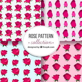 Motivi decorativi di belle rose