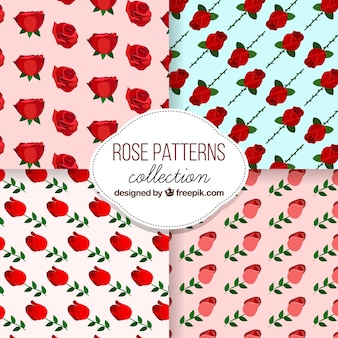 Motivi decorativi di rose