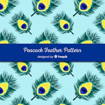 Decorative peacock feather pattern concept