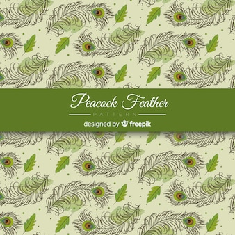 Decorative peacock feather pattern design