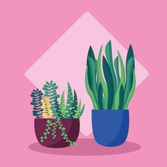Decorative plants flat image design
