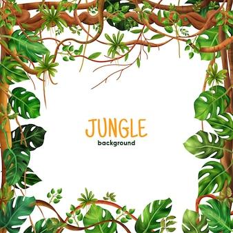 정글 들어온다 덩굴 식물과 장식 열대 우림 등반 등나무 사각형 프레임 배경 현실적인 나뭇잎