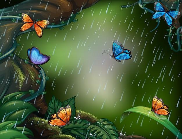 雨の中で飛んでいる蝶々との深い森の風景