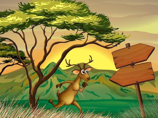 A deer following the wooden arrowboard