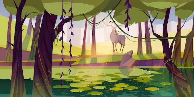 Cervi nella foresta con palude e paesaggio forestale