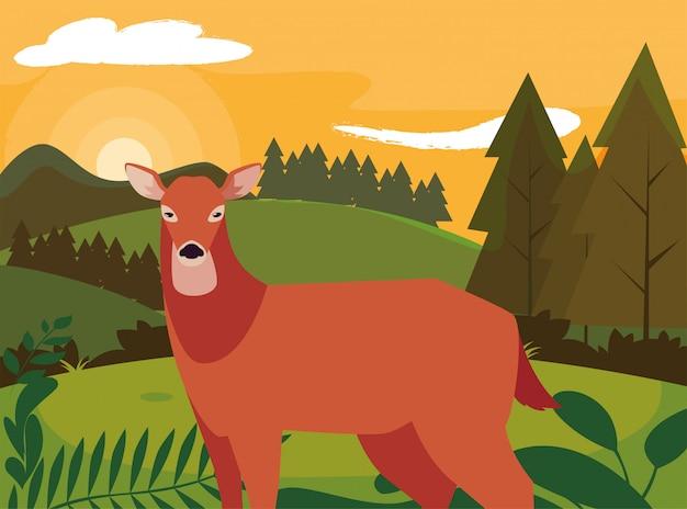 Deer happy autumn season flat