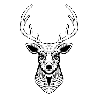 Deer head illustration  on white background.  element for emblem, sign, poster, label.  illustration