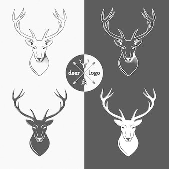 Deer head isolated for hunter club, hunting. vector illustration