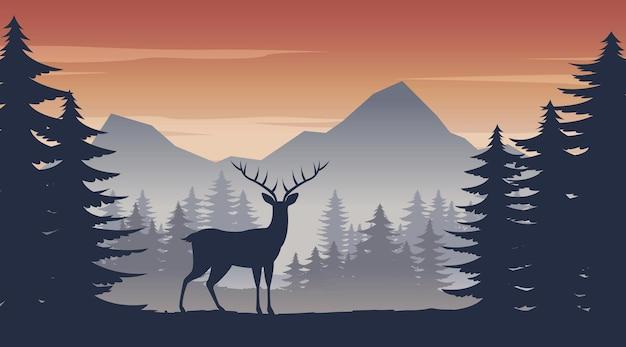 Олень стоит в сосновых джунглях на время заката
