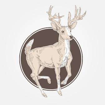 Deer vintage