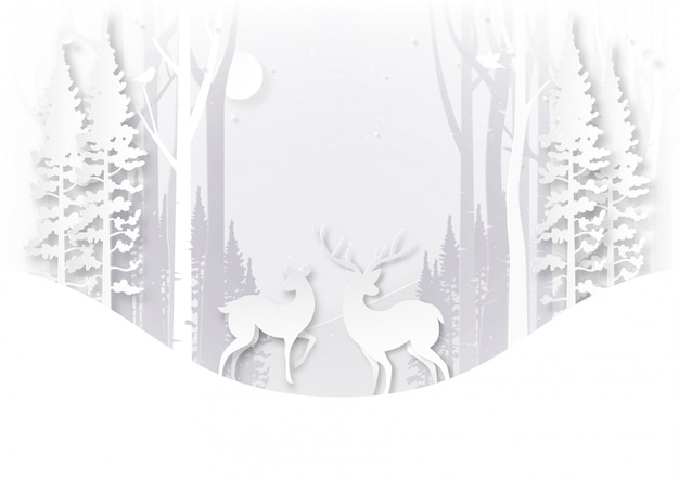 Deer wildlife in forest on winter season landscape and christmas day concept.