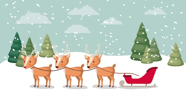 Deer with sled in snowscape