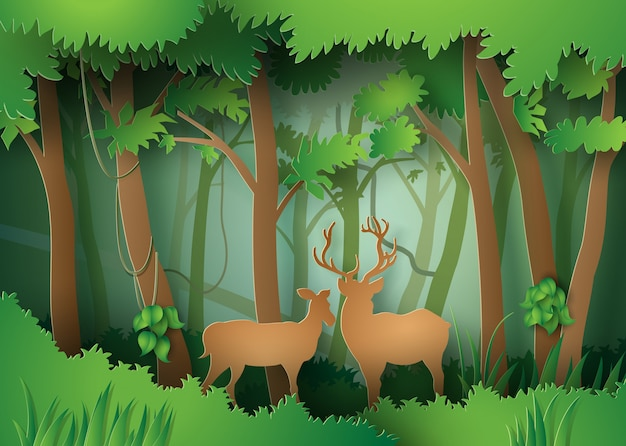 Deers in the forest.