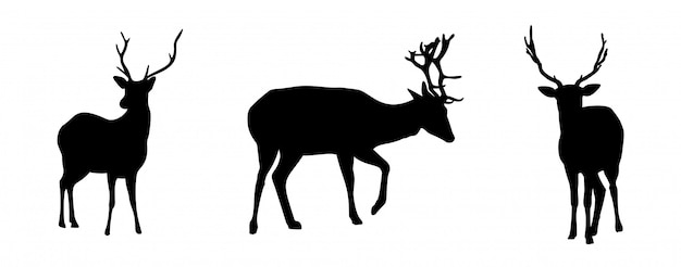 Deers silhouettes set isolated on white background