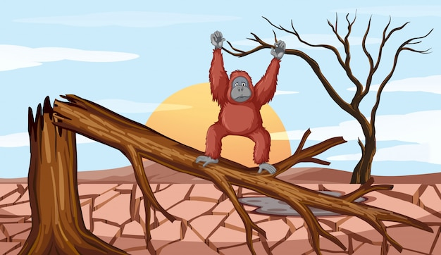 Deforestation scene with chimpanzee