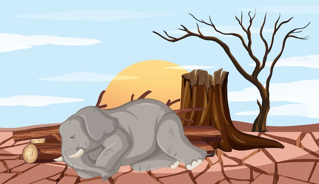 Deforestation scene with elephant and drought