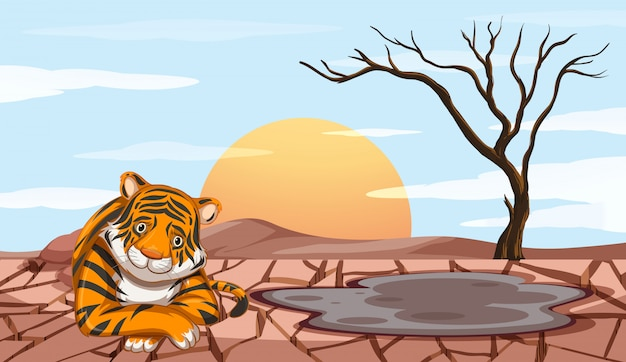 Deforestation scene with sad tiger