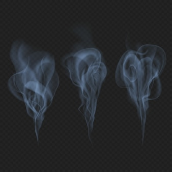 Delicate realistic smoke, fog or mist waves transparent effect. just drop to artboard and enjoy