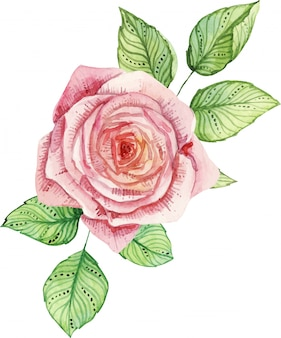 Delicate watercolor composition with roses and leaves