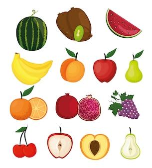 Delicious fruits healthy food vector illustration design