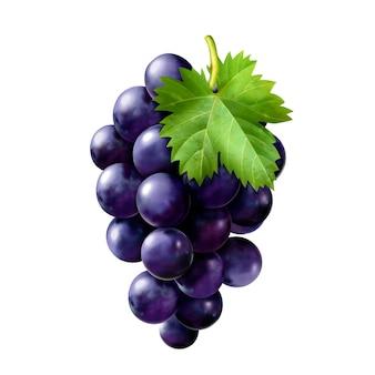 おいしい完熟ブドウ