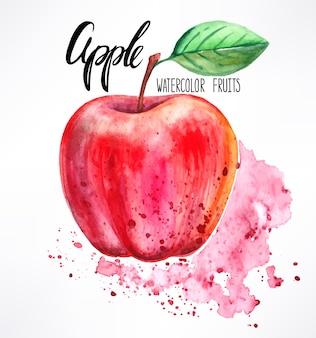 おいしい熟した水彩リンゴ。手描きイラスト