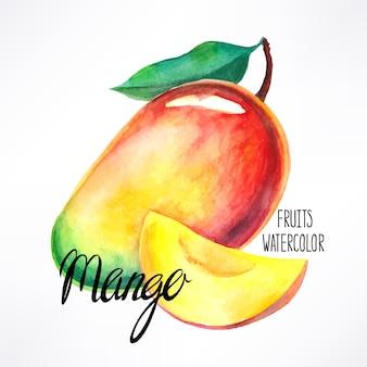 おいしい熟した水彩マンゴー。手描きイラスト