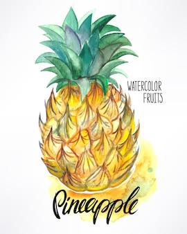 おいしい熟した水彩パイナップル。手描きイラスト