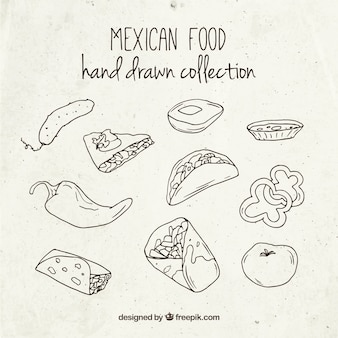 Delicious sketches mexican food