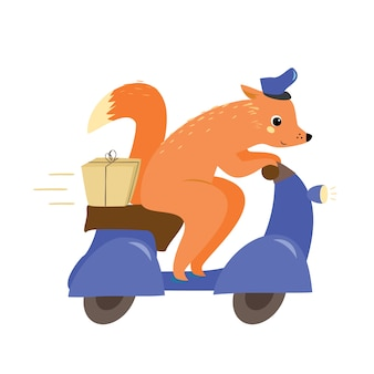 Delivery service. fox on a moped with a parcel. postman