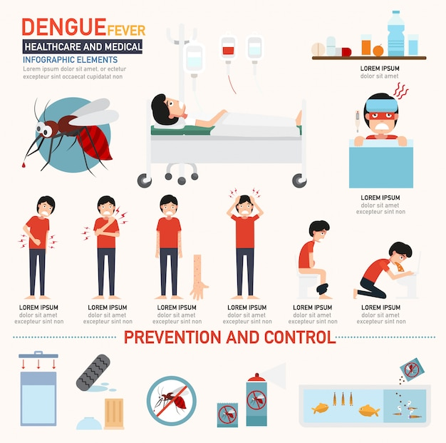 Dengue fever infographics