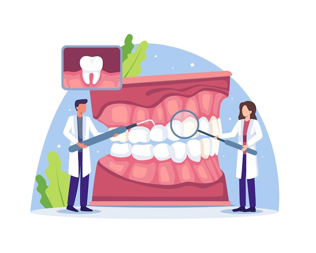 歯科医は人間の歯を調べたり治療したりします。歯科医の診断と治療人間の歯、口腔衛生医学の概念。フラットスタイルのベクトル図