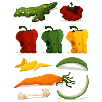 Descomposed vegetables collection