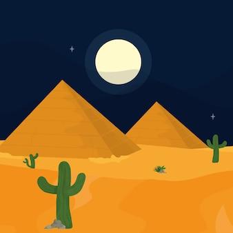 밤에 사막
