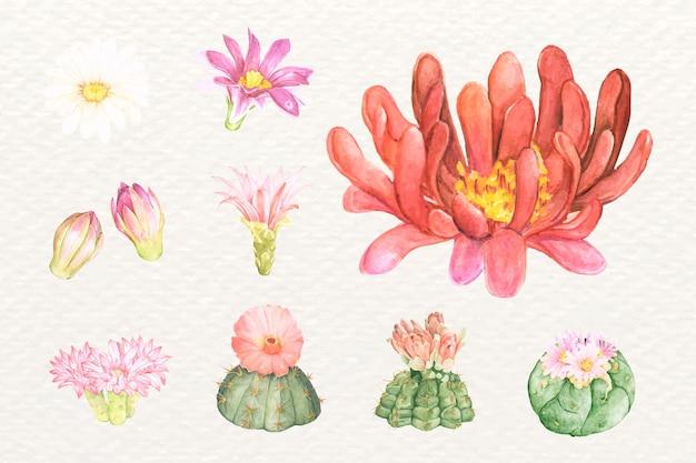 Set di adesivi png con fiori di cactus del deserto