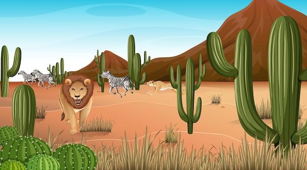 많은 선인장과 낮 장면에서 사막 숲 풍경