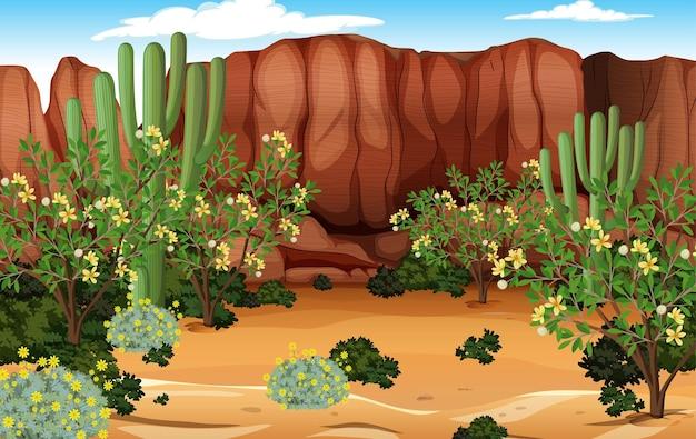 サボテンが多い昼間の砂漠の森の風景