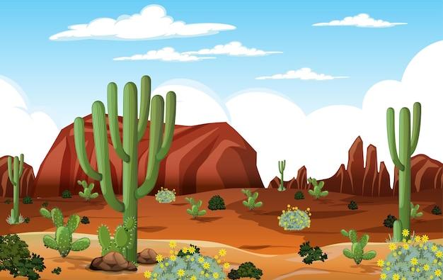 Пустынный лесной пейзаж в дневное время с множеством кактусов