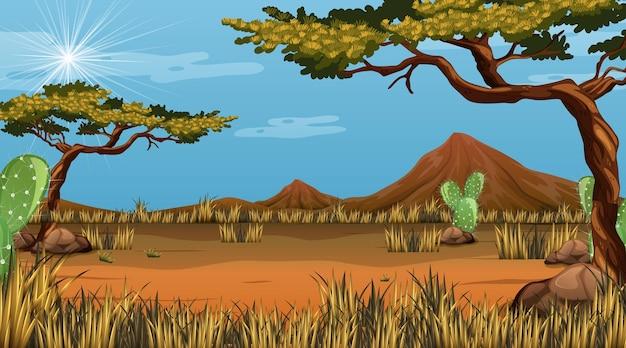 다양한 사막 식물이 있는 낮 장면의 사막 숲 풍경