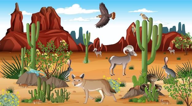 야생 동물과 함께 낮 장면에서 사막 숲 풍경