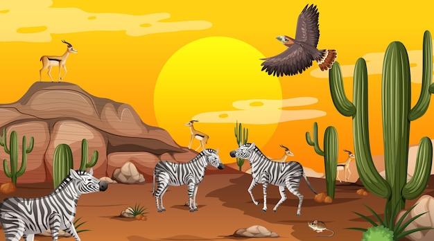 Пустынный лесной пейзаж на закате с дикими животными