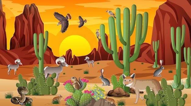야생 동물과 함께 일몰 시간 장면에서 사막 숲 풍경