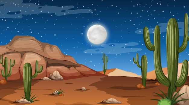Desert forest landscape at night scene with many cactus