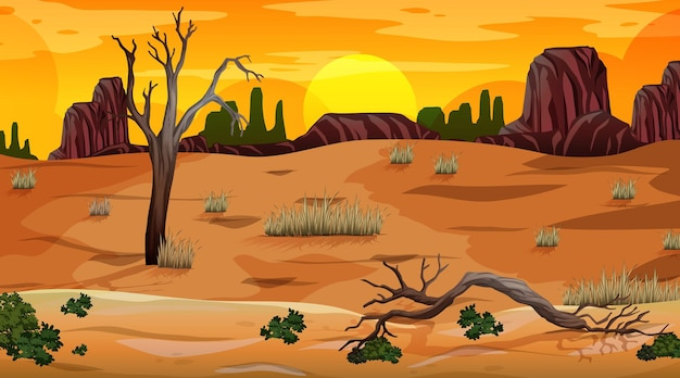 Desert forest landscape at sunset time scene