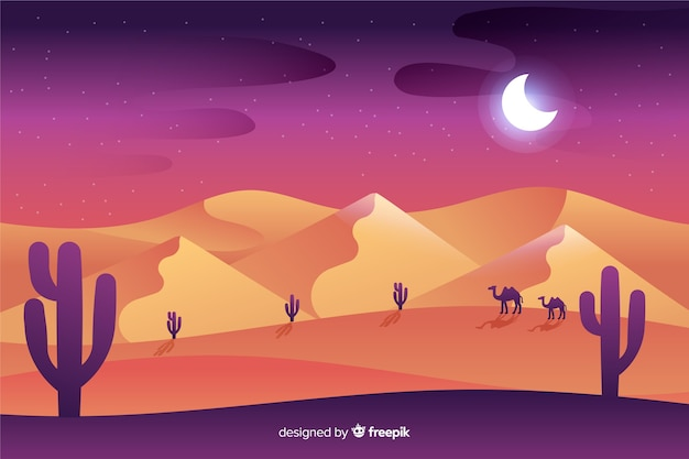 Desert landscape at night time