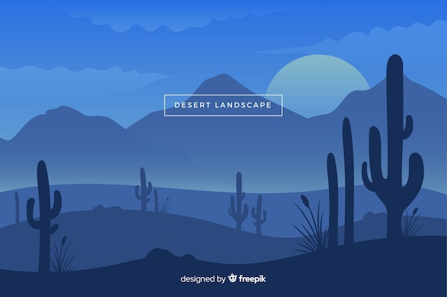 Desert landscape in the night