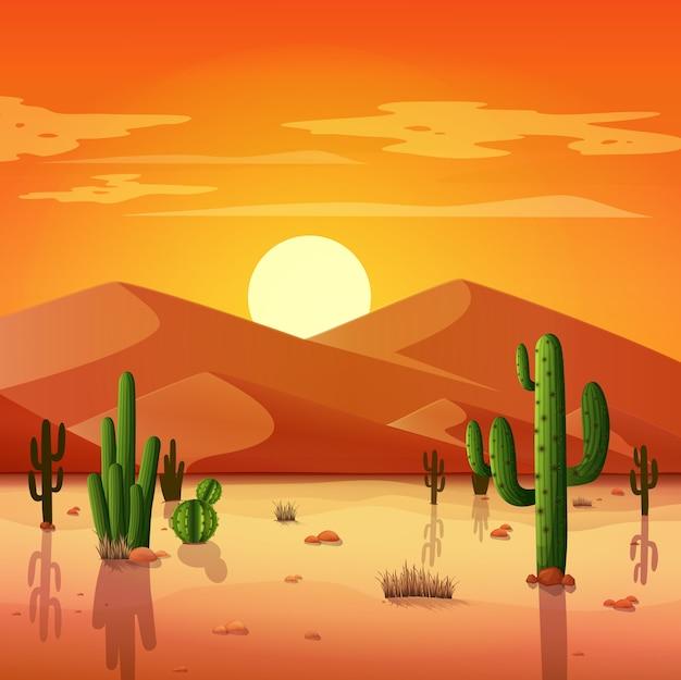 夕日の背景にサボテンと砂漠の風景