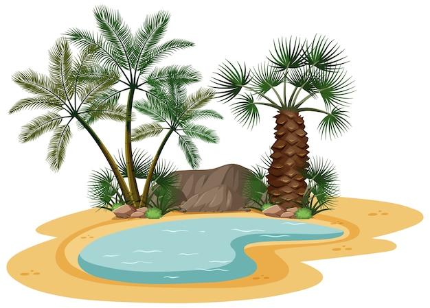 白い背景の上の自然の木の要素と砂漠の風景